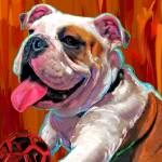 """Capone English Bulldog"" by artpaw"