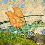 """Orange Eyed Dragon"" by maryostudio"