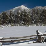 """San Francisco Peaks - Winter"" by FindleyPhoto"