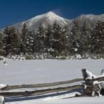 """San Francisco Peaks - Winter"" by FindleyPhoto"