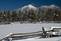 San Francisco Peaks - Winter