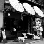 """Umbrella Shop"" by impressionistheart"