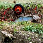 """Upside-down Wheelbarrow"" by impressionistheart"
