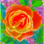"""Hot Rose"" by s2design"
