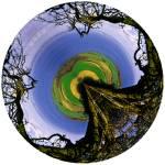 """""""TreeSea 3"""" by NickMeers"""