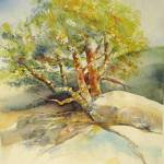 """Tree"" by lindahaile"