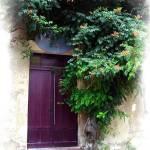 """""""St Emillion Door"""" by jbjoani2"""