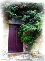 St Emillion Door