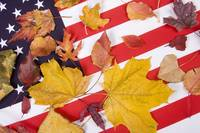 Patriotic Autumn Colors
