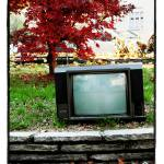 """""""watchinTV"""" by maxvuer"""