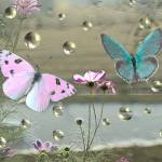"""Bubbling Butterflies"" by tricia"