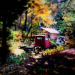 """Old Truck in Fall"" by johnburnett"