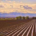 """Irrigation, Owyhee Co., Idaho"" by eye4nature"