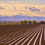"""Irrigation, Owyhee Co., Idaho"" by eye4nature"