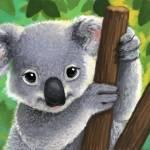 """Content Koala"" by camartin"