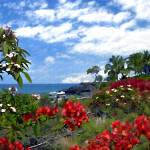 """View from Keauhou, Kona"" by kurt50"