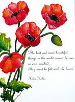 Red Poppies poem
