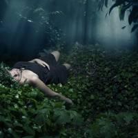 Fairy Tale Slumber Art Prints & Posters by Dylan Murphy