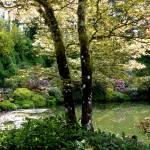 """""""Victorian Garden Pond"""" by Groecar"""