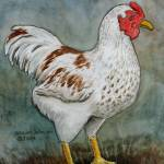 """Rooster"" by revelation_art_studio"