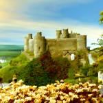 """""""Harlech Castle, Wales"""" by kurt50"""