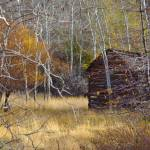 """""""Black Canyon Cabin"""" by nilesphotography"""