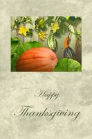 Bountiful Gourds Thanksgiving Card