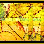 """Leaf Abstract"" by jbjoani2"