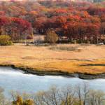 """The Wetlands at Late Fall Three"" by toniroberts"