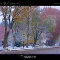 """Autumn Winter Transitions Poster Print"" by James ""BO"" Insogna"