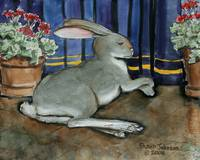 Regal Rabbit