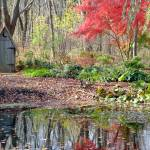"""""""Outhouse at the pond"""" by longdistgramma"""