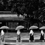 """""""a stroll in the rain"""" by daviddeehoeng"""