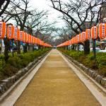 """lanterns in the day"" by daviddeehoeng"