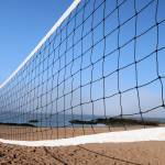 """Volleyball Anyone"" by karolsstuff"