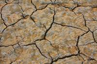 Cracked Dry Lake Bed