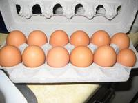 eggs from farmers market