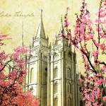 """Salt Lake Temple (pink blossoms)"" by brycegandy"