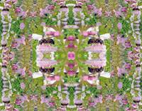 Wasp Visiting Pink Flowers ~ Photo Quilt