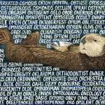 """""""otter"""" by sbuschman"""