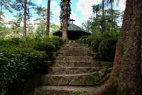 Steps to Baguio Botanical Garden
