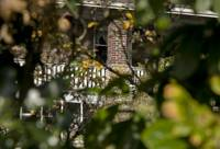 The Villa Through the Laurel Hedge