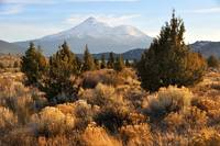 Mount Shasta in the Fall (Autumn)