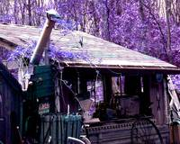 Purple Shack