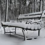 """The Snow Covered Bench"" by LynnRoebuck"