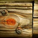 """Rustic Wood"" by PerryWebster"