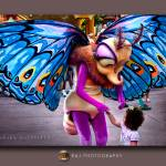 """loving butterfly"" by rajartworks"