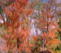 Autumn Impression