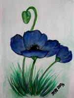 Blue Poppy in Watercolor