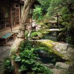 """Japanese Garden"" by tomhitchman"